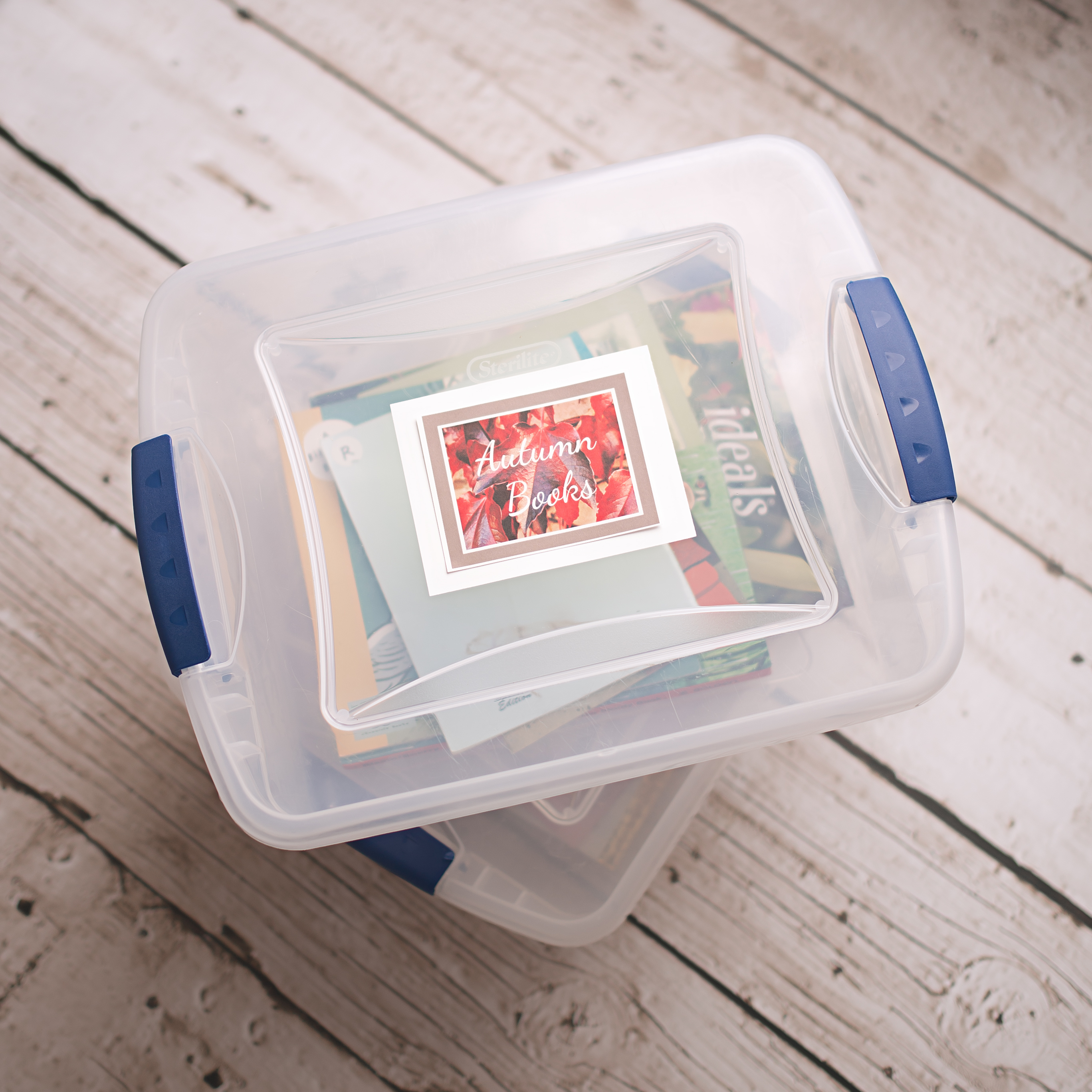 fall books for kids, free box labels