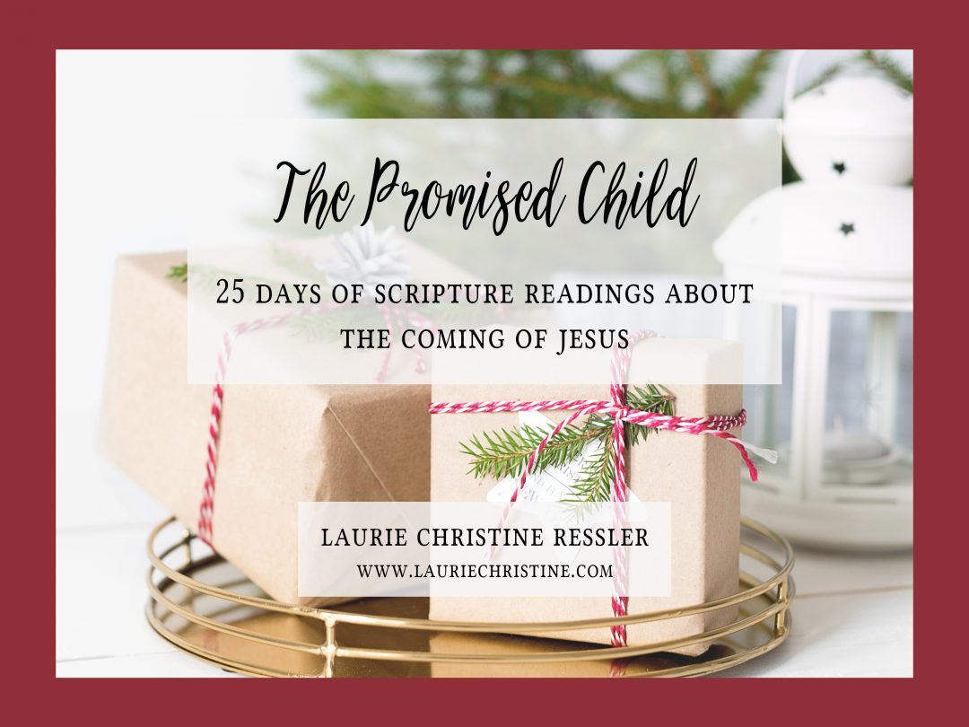 The Promised Child, Laurie Christine